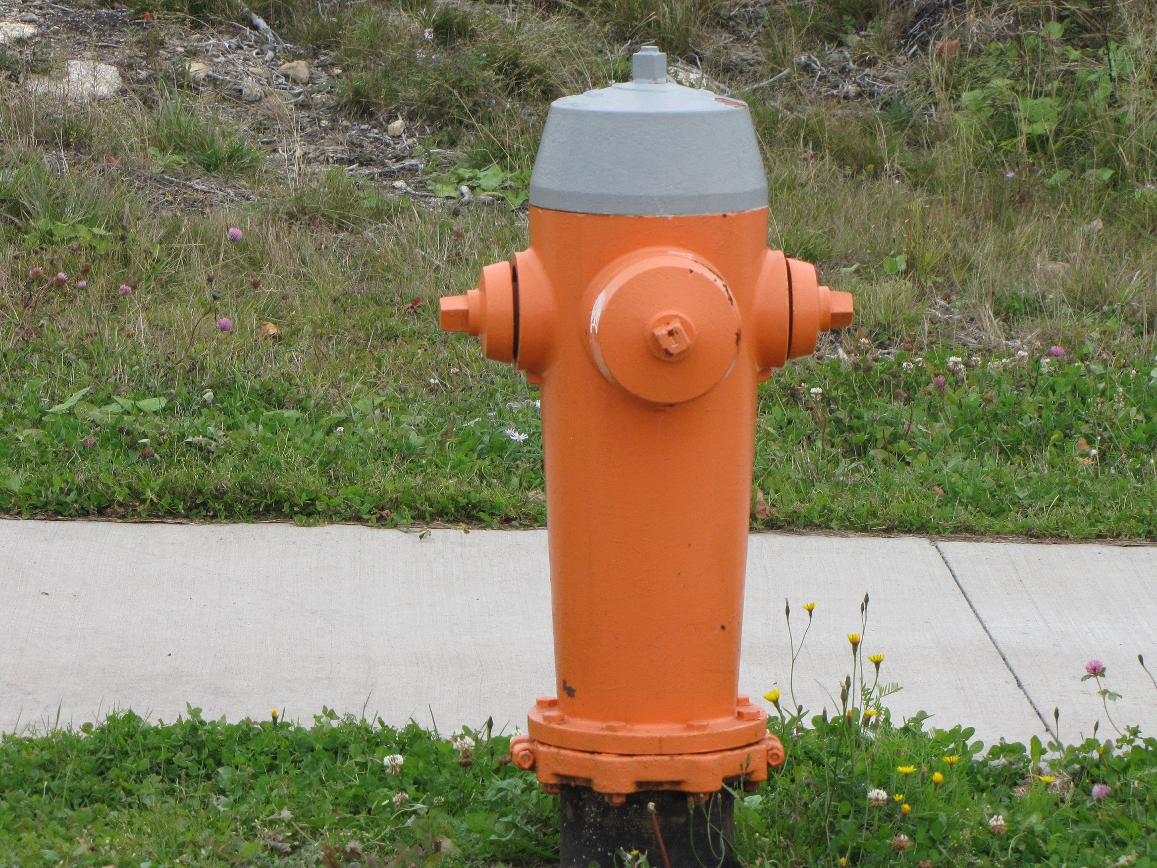 Orange fire hydrant