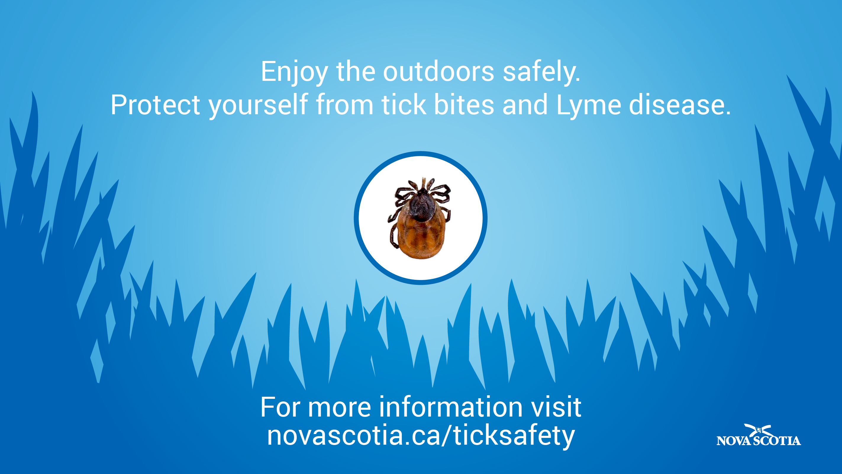 blue screen with picture of tick and link information to provincial webpage