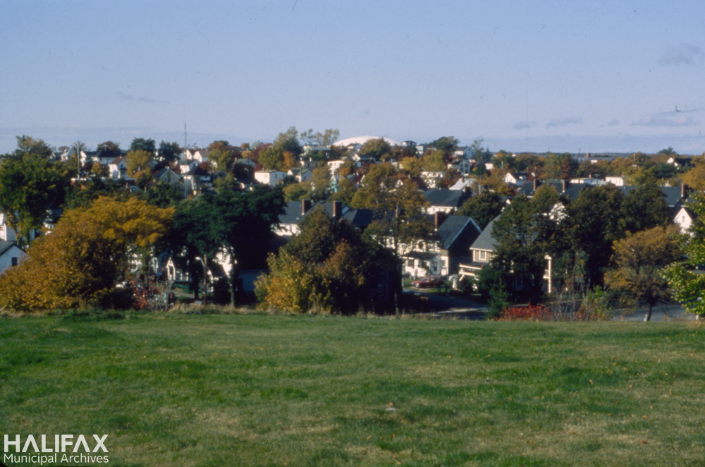 Colour photograph of a field with houses in the background