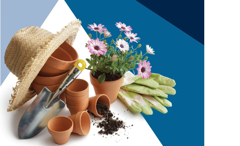 Gardening tools with pots and plants