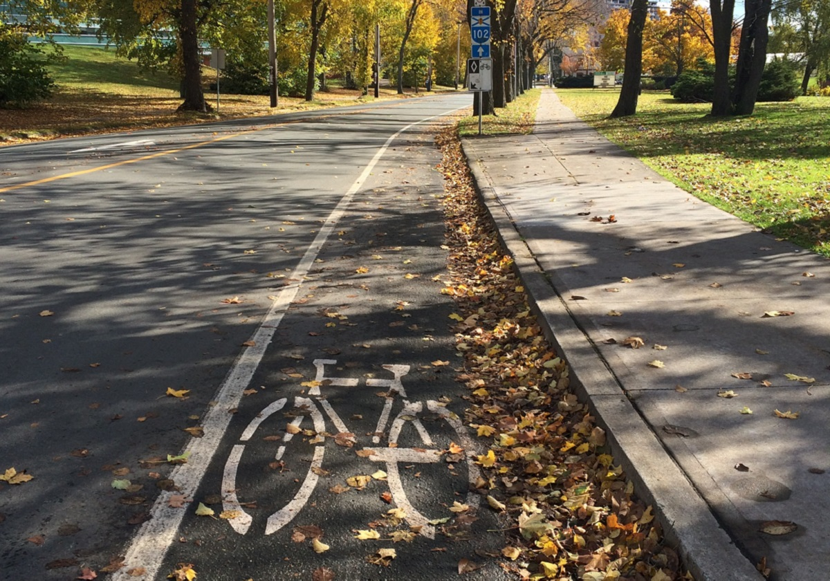 Bell Road Bicycle Lane in autumn