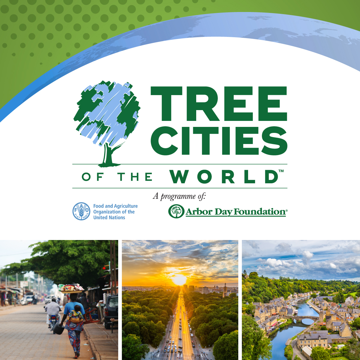 Tree Cities of the World Halifax