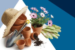 Gardening tools, pots, and soil on a blue background