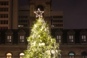 a photo of the holiday tree at Grand Parade