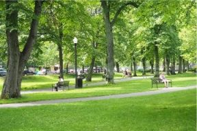 A photo of people enjoying Victoria Park in Halifax on a beautiful sunny day. Lots of lush greenery.
