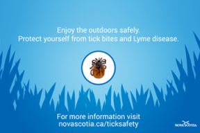Provincial graphic for tick safety