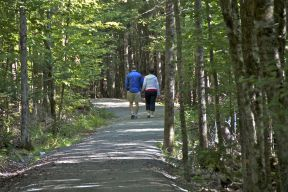 Couple walking along trail with lots of trees beside the crusher dust path
