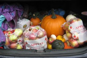 Car trunk full of local food