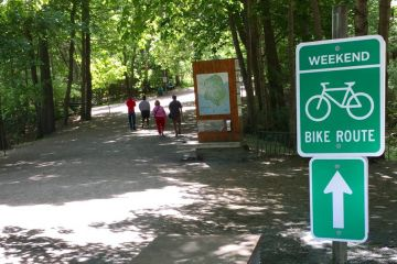 A marked bike path in Point Pleasant Park in summer