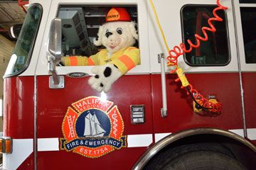 Photograph of Sparky the Fire Dog driving a Halifax Regional Fire & Emergency Fire Truck